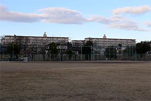 蓬莱中央公園